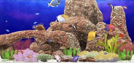 aquanaut002.jpg